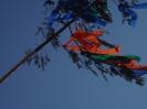 Buschenschankbaum aufstellen 2008_25