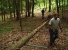 Buschenschankbaum aufstellen 2008_2